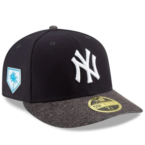 Yankees 2019 Spring Training Hat