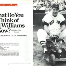 WHAT DO YOU THINK OF TED WILLIAMS NOW? RICHARD BEN CRAMER
